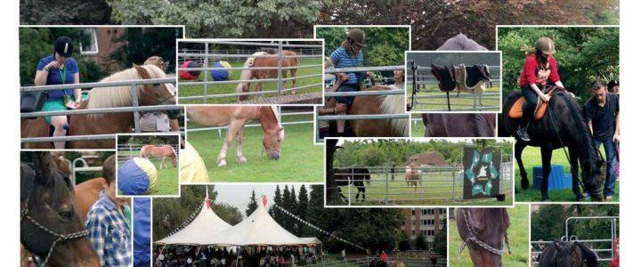 Medisch Pedagogisch Centrum Terbank, Dienst Attraktief – Heverlee: Omgaan met paarden, een inclusieproject voor jongeren met een verstandelijke beperking en ernstig  probleemgedrag